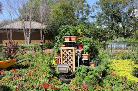 file epcot diy small space garden jpg wikimedia commons