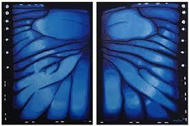 jungle wildlife blue morpho butterfly painting by jason kamin