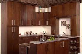 entertain picture of kitchen curtains ideas modern bronze kitchen full size of kitchen kitchen cabinet door knobs gorgeous kitchen cabinet door knobs canada horrifying