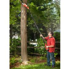 cordless electric pole saw dr power equipment