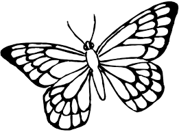 91 butterfly coloring print free printable