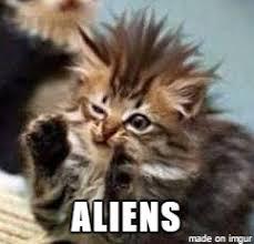 It Was Aliens Meme - ancient aliens kitten meme on imgur