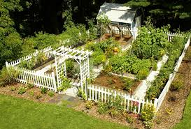 Edible Garden Ideas Vegetable Garden Design Nz Edible Garden Design Tips From