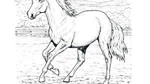 coloring sheets of a horse foal coloring pages big kiss two horses coloring page foal coloring