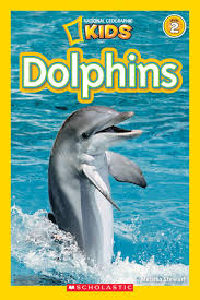 dolphins by melissa stewart scholastic
