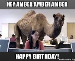 Amber Meme - hey amber amber amber happy birthday hump day camel make a meme