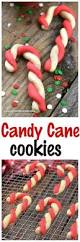 candy cane cookies spend with pennies