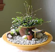 small indoor garden ideas pottery barn the mini garden guru from twogreenthumbs com
