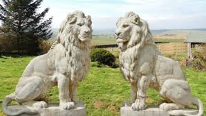 pair of cast sitting lions 1 35m high white