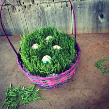 easter basket grass diy archives simplify live