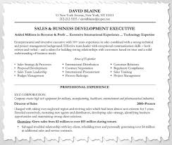 Example Of A Sales Resume by Example Of A Customized Resume
