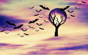 halloween photography backgrounds pin by ashley rouse on wallpapers pinterest wallpaper scary