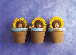 Flower Pots - anne geddes the photographer who put babies in flower pots is