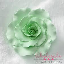 mint green flowers 3 formal mint green 16 per box wholesale sugar flowers
