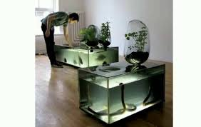 aquarium decorations ideas