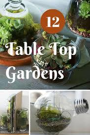 Indoor Garden Design by 253 Best Indoor Gardening Bob Vila U0027s Picks Images On Pinterest