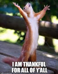 Praying Memes - praying squirrel memes imgflip