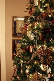 62 best grapevine trees u0026 things images on pinterest grapevine