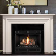 Electric Vs Gas Fireplace by Chic Burn For My New Family Room Fireplace The Best Looking By