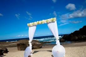 wedding arches coast wedding gold coast forever yours weddings