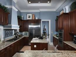 kitchens with dark cabinets amazing light blue kitchen walls with dark cabinets 8580