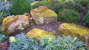How To Build A Rock Garden How To Build A Rock Garden Gardeners Palace