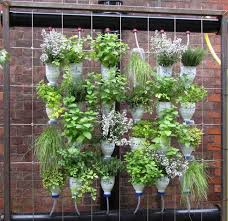 Bottle Garden Ideas Vertical Herb Garden Insteading