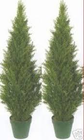 six 4 foot artificial topiary cedar trees potted indoor outdoor