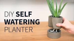 diy self watering concrete planter youtube