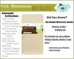 Naturepedic Mini Crib Mattress by Best Crib Mattresses Organic Best Mattress Decoration