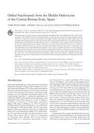 bureau de recherches g logiques et mini es orthid brachiopods from the middle pdf available