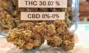 ten dispensary deals in metro denver for st patrick u0027s day and