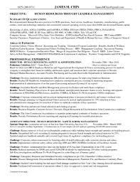 hr objective in resume human resource management resume resume for your job application production artist resume objective vosvetenet best human resources manager