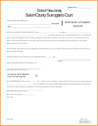 Ohio Power Of Attorney Form Pdf by 9 Power Of Attorney Form Pdf Free Download Ledger Paper
