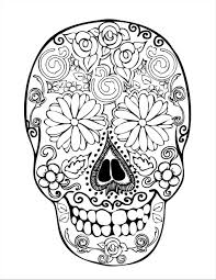 indian skull drawing at getdrawings com free for personal use