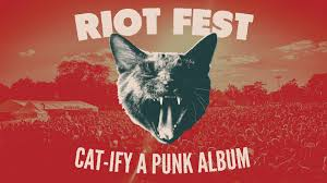 cat photo album riot x do312 s cat ify a album contest riot