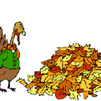 animated turkey clipart page 7 clipart ideas reviews