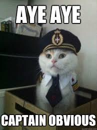 Captain Obvious Meme - the seo myth of going viral moz