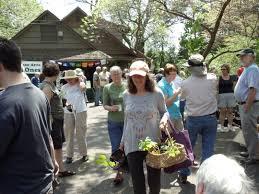 native plant nursery michigan spring plant exchange u2013 kalamazoo area chapter of wild ones