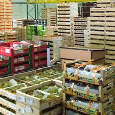 chambre froide pour fruits et l馮umes capfroid froid commercial et industriel chambre froide