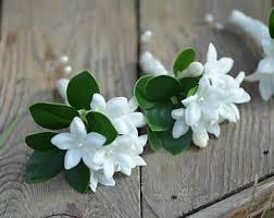 Stephanotis Flower Stephanotis Flowers Etsy