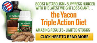 Teh Yacon yacon syrup for weight loss benefits nutrients paperblog