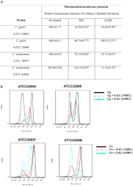 frontiers eugenol induces phenotypic alterations and increases