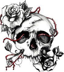 skull and roses by xxevillovexx deviantart com on deviantart