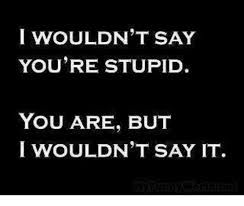 You Re Stupid Meme - i wouldn t say you re stupid you are but i wouldn t say it meme