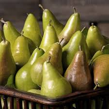 mail order fruit mail order fresh asian pears fruit gift baskets get pears through