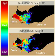 bloom noaa partners predict severe harmful algal bloom for lake erie
