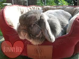 Rabbit Beds Bed Dress My Bunny