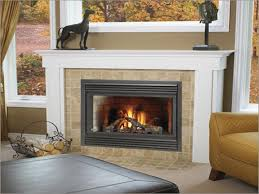 small gas fireplaces fireplace ideas