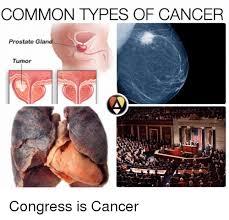Tumor Meme - common types of cancer prostate glan tumor congress is cancer